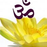 logo FFY